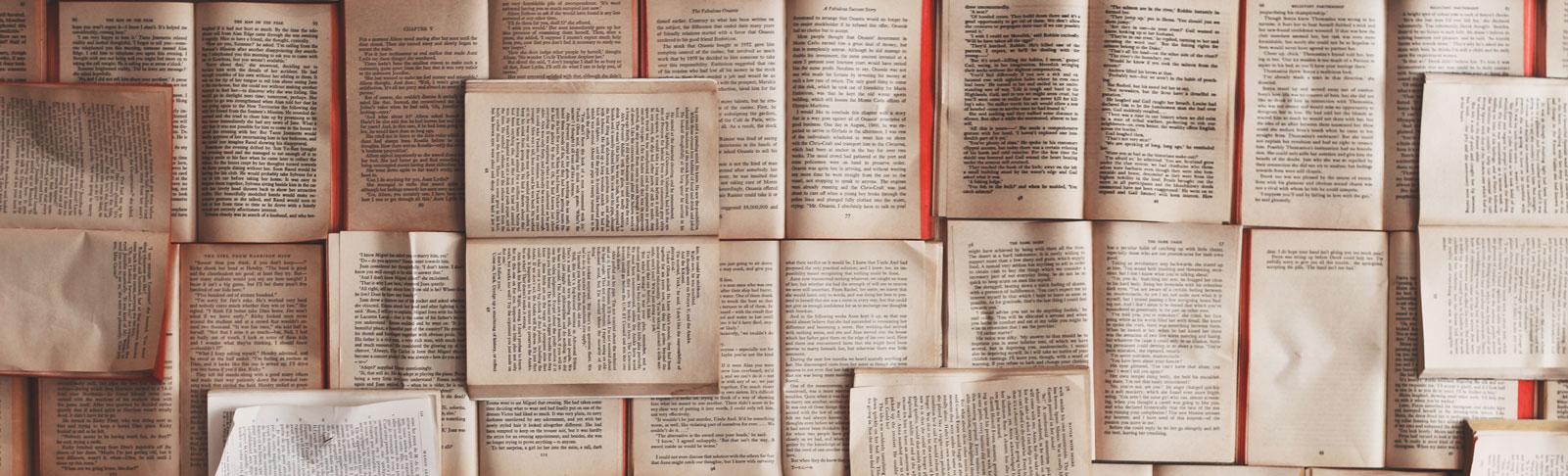 Übersetzungen und Korrektur - spanisch, deutsch